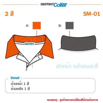 สมาร์ท SM 01 1