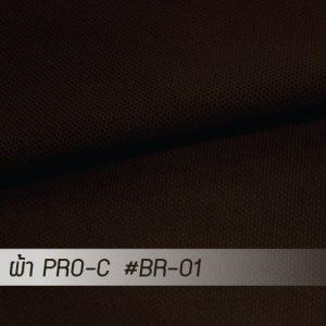 BR 01 PRO 1