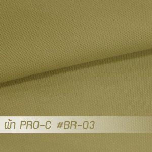 BR 03 PRO 1