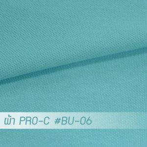 BU 06 PRO 1