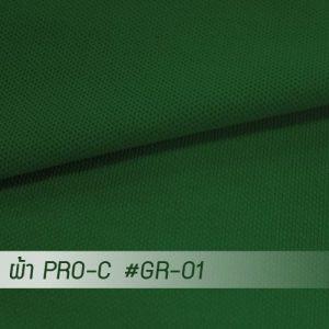 GR 01 PRO 1