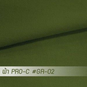 GR 02 PRO 1