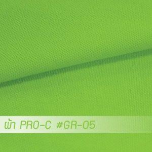 GR 05 PRO 1