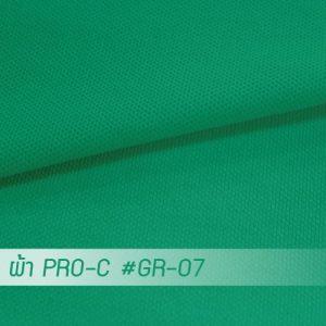 GR 07 PRO 1