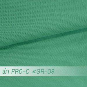 GR 08 PRO 1