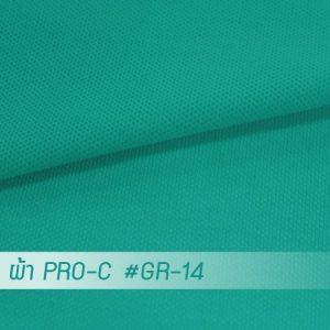 GR 14 PRO 1