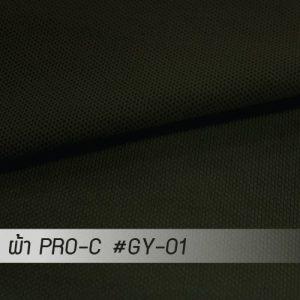 GY 01 PRO 1