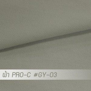 GY 03 PRO 1