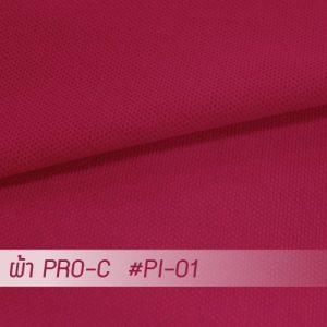PI 01 PRO 1