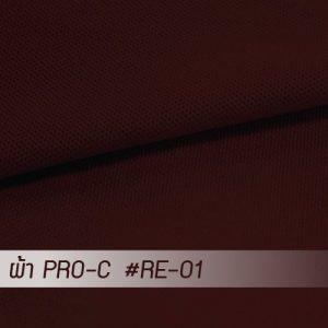 RE 01 PRO