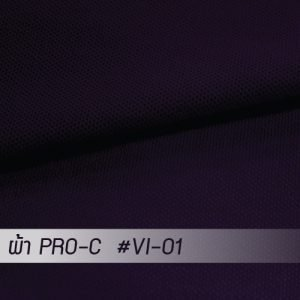 VI 01 PRO