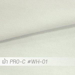 WH 01 PRO