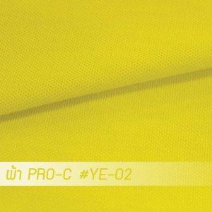 YE 02 PRO